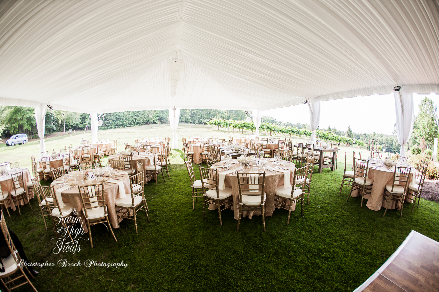 The Farm at High Shoals -- Atlanta Vineyard Wedding Venue (129 of 676)